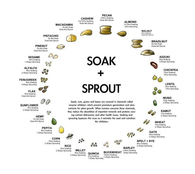 soak-+-sprout-chart1