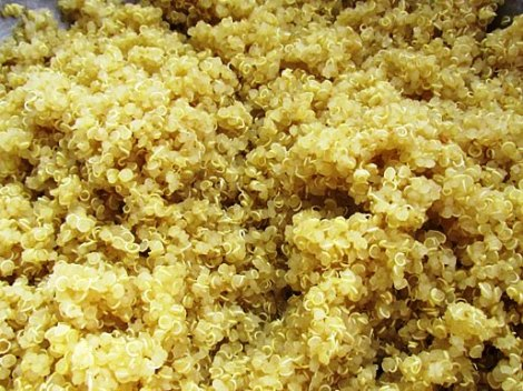 The quinoa should look like this when finished cooking